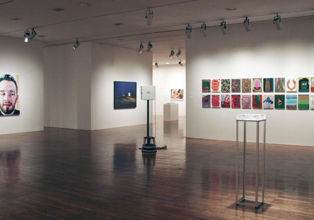 2012 School of Art + Design Faculty Exhibition, installation at Krannert Art Museum, 2012.