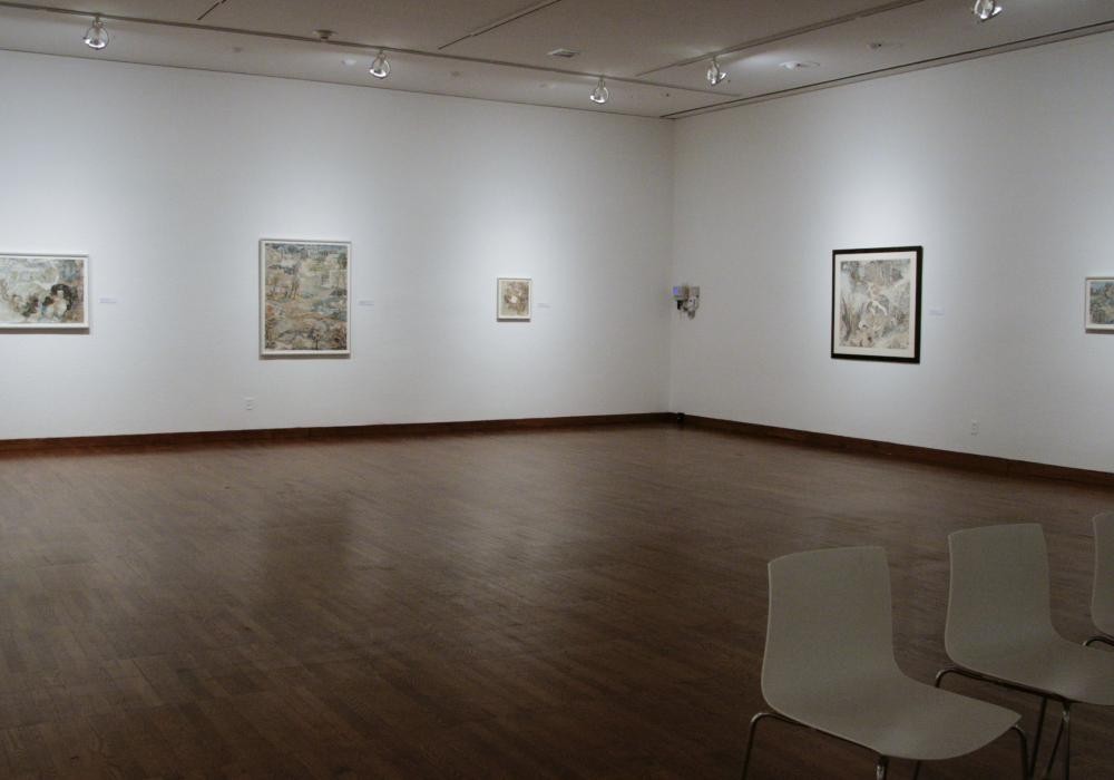 Yun Fei Ji: Selected Works, installation at Krannert Art Museum, 2013.