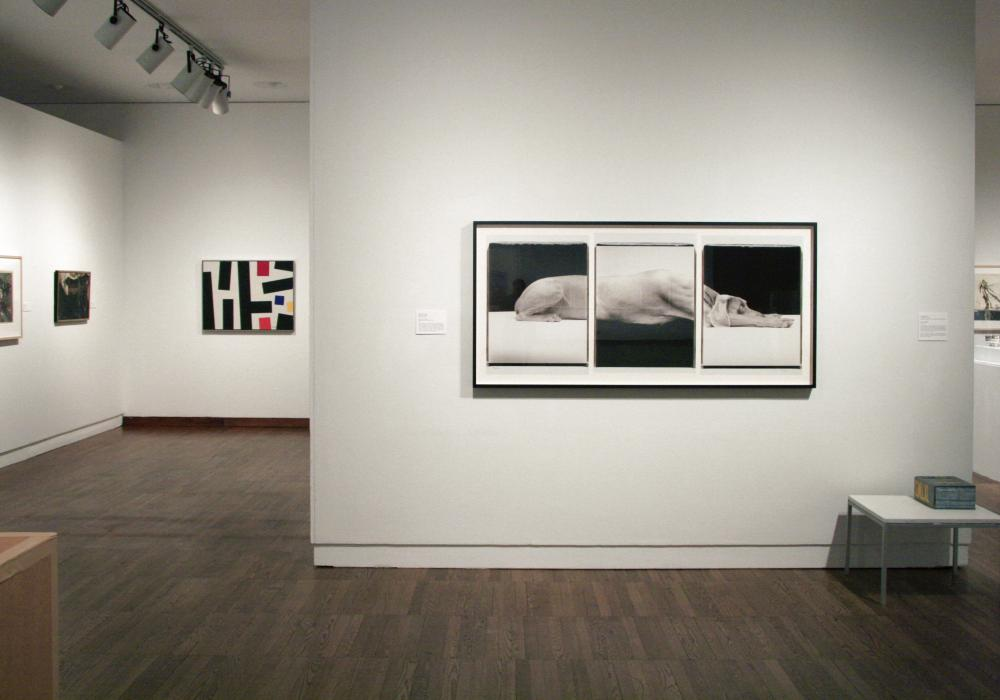 Recent Acquisitions 2006-2011 Installation Photo