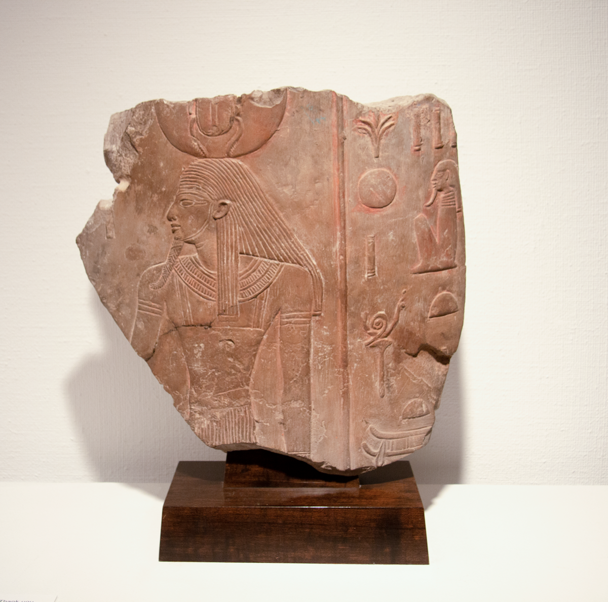 A large, tan, broken piece of an ancient Egyptian column. Carved into the stone fragment is an Egyptian man facing left. Half of a scarab beetle is above his head, broken off at the edge of the fragment. To the right are hieroglyphs.