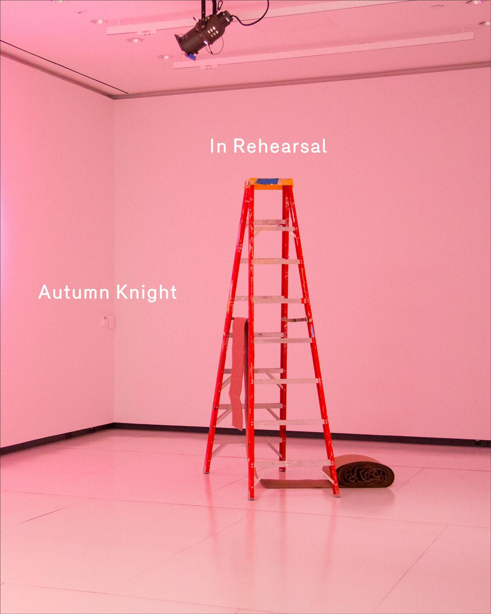 Autumn Knight: In Rehearsal, 2019. Published by Krannert Art Museum/Project Row Houses. Distributed by ARTBOOK | DAP.  Text by Ryan N. Dennis, Jennifer Doyle, Cynthia Oliver, Amy L. Powell, Sandra Ruiz. Book design by Practise.