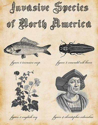 Ryan Young, Invasive Species of North America, 2018. Courtesy of the artist. © Ryan Young
