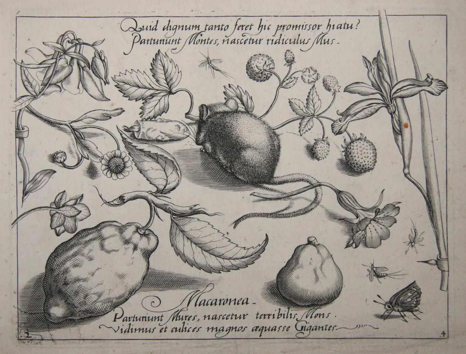 Jacob Hoefnagel after Joris Hoefnagel, Quid dignum tanto feret hic promissor hiatu? (What will this promisor produce worthy of such jawing?), Part IV, plate 2 from Archetypa Studiaque, Frankfurt, 1592. Engraving. Museum Purchase through the Robert and Son