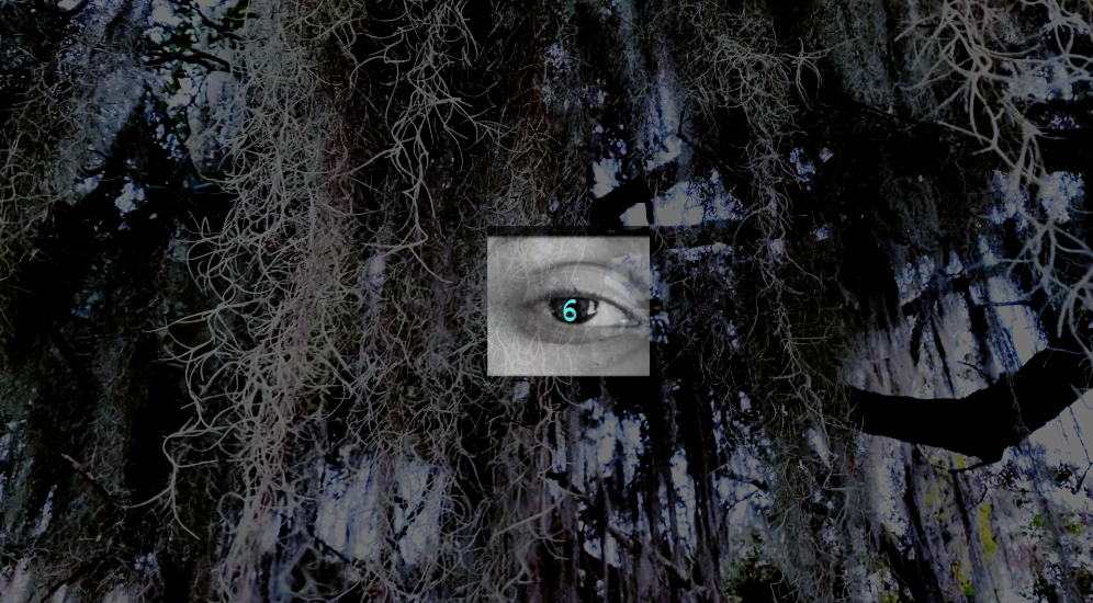 dark image of roots with a square in the center of it. Inside the square is a bright blue eye.