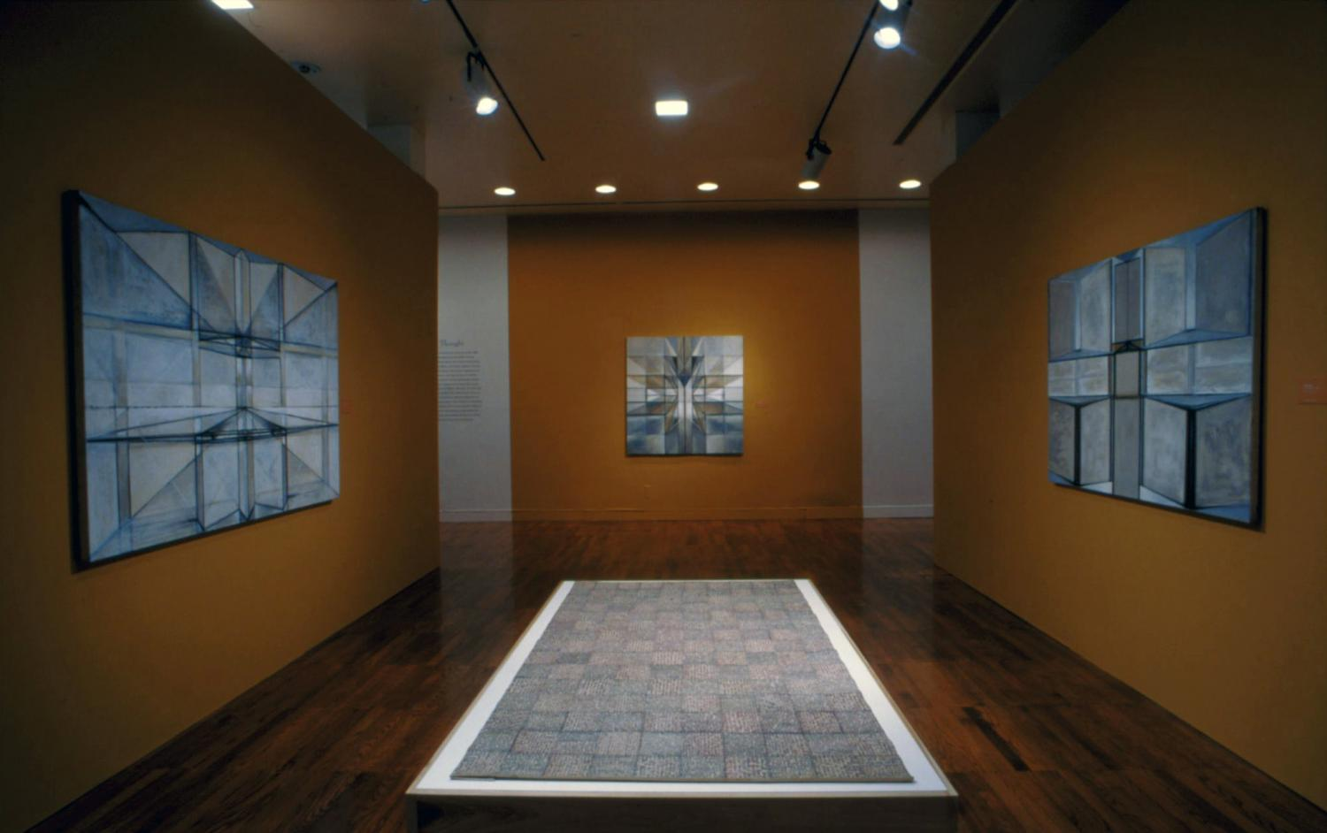 Uninterrupted Flux: Hedda Sterne, A Retrospective, installed at Krannert Art Museum, 2006.