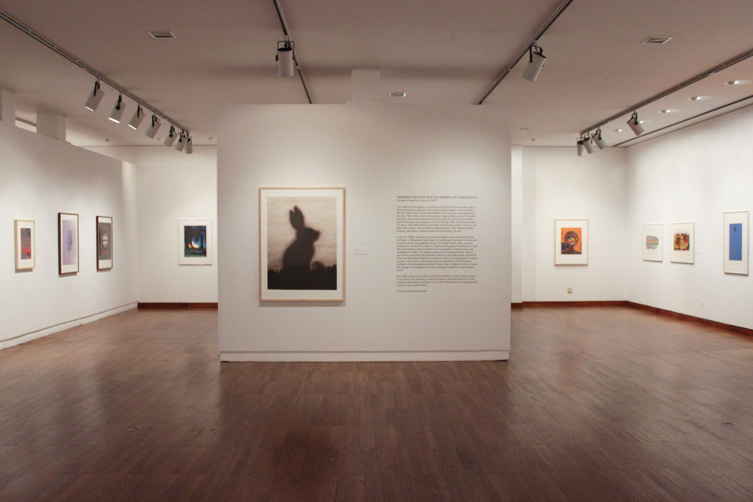 Tamarind Institute and the Rebirth of Lithography, installation at Krannert Art Museum, 2015.