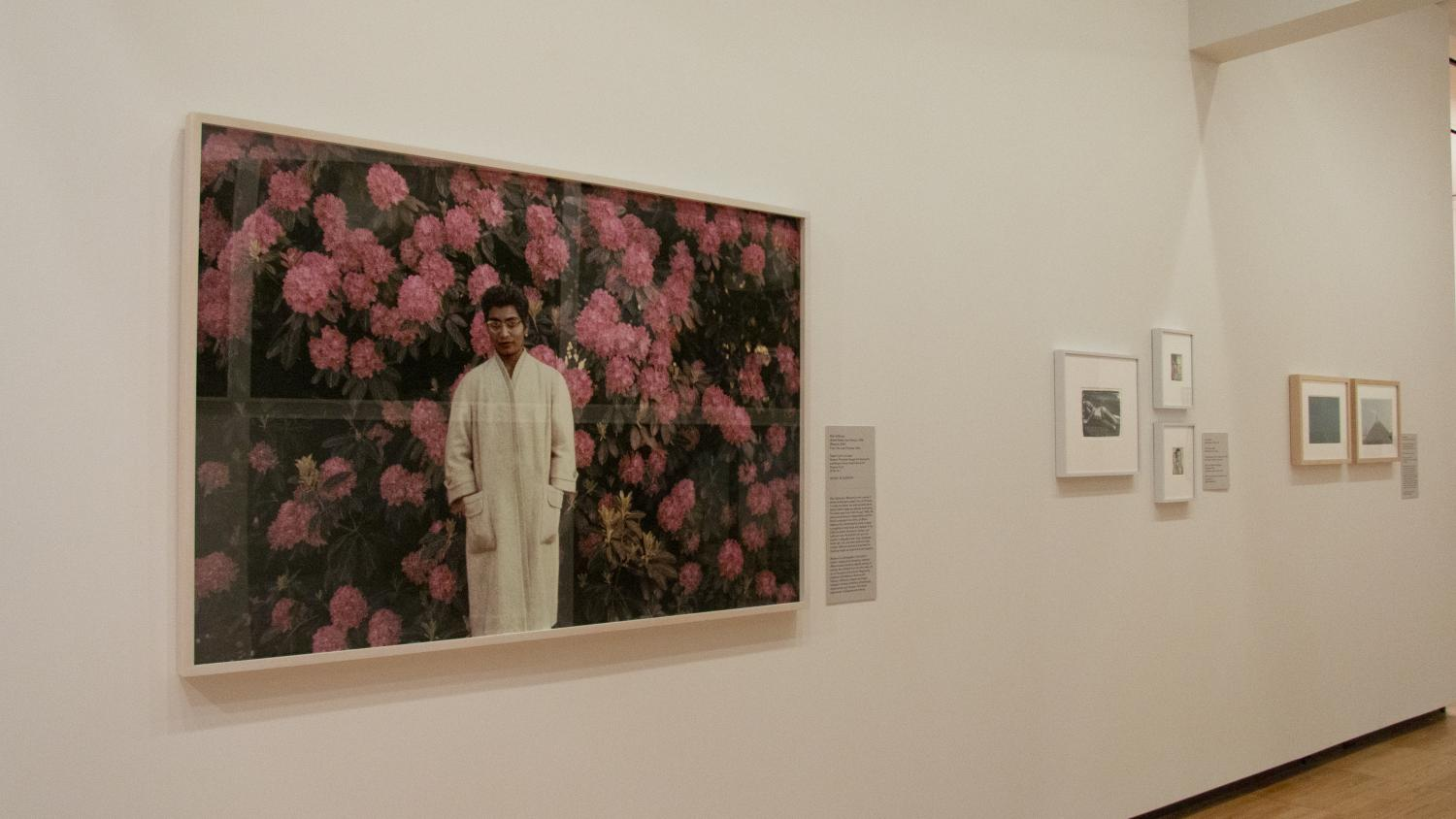 Large, fuzzy photograph of a South Asian woman in a long white coat. She stands in front of a giant blooming rhodedendron bush. The reason the image is blurry is that the artist has scratched away the image. He hopes to show how memory can fade over time.