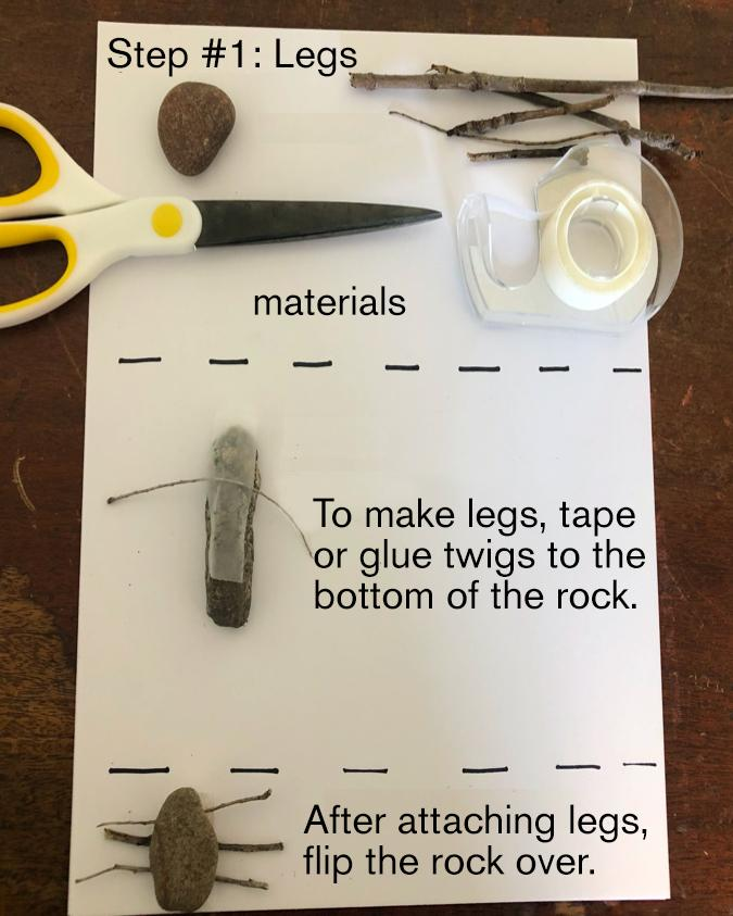 Step One: To make legs, tape or glue twigs to the bottom of the rock. After attaching legs, flip the rock over.