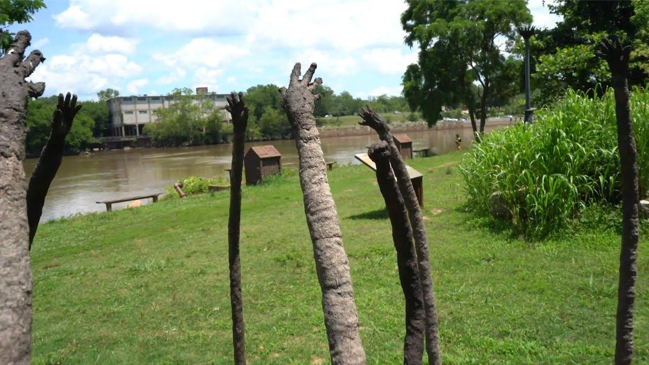 Field with sculptures standing. They resemble large sticks in the ground with hand-like tops.