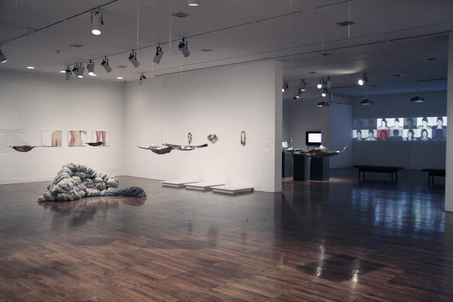 School of Art and Design Master of Fine Arts Exhibition, installation at Krannert Art Museum, 2011.