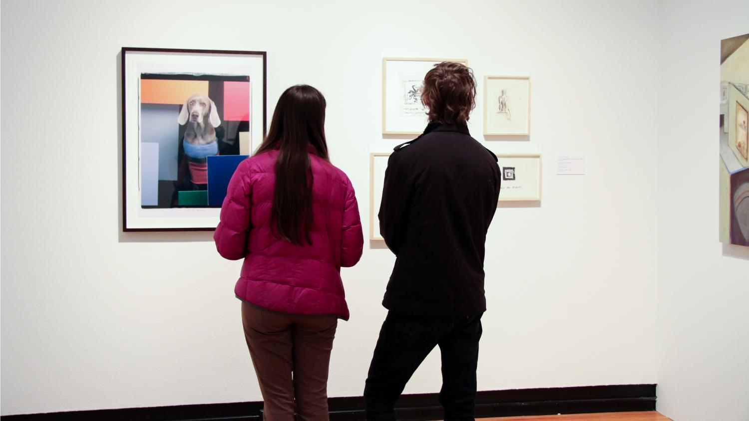 Artists Including Me: William Wegman, installation at Krannert Art Museum, 2015.